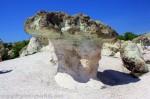 kamenni gubi-1