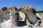 kamenni gubi-4