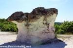 kamenni gubi-5