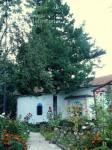 Divotinski_manastir-176_06_b